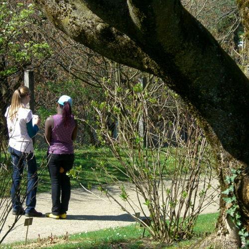 Bild zum Weblog Extra heißes Wetter im April treibt uns im Biologieunterricht in die Natur