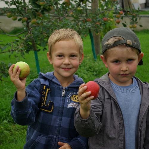 Bild zum Weblog Besuch beim Obstbauern
