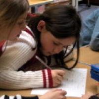 Bild zum Weblog Zuwachs