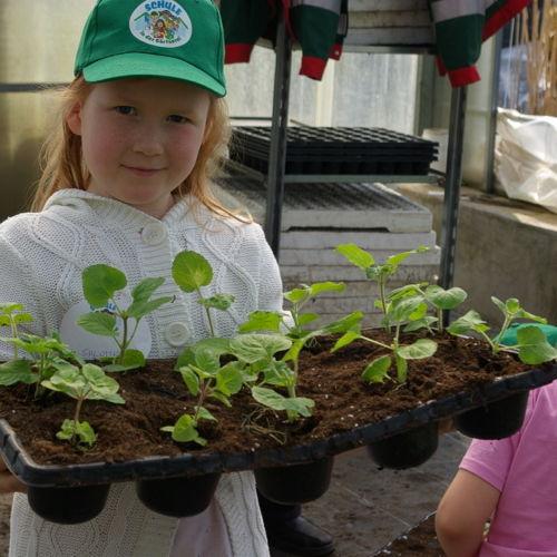 Bild zum Weblog Stippvisite: Stadtgärten