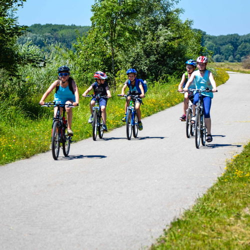 Bild zum Weblog Donauradweg