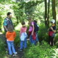 Bild zum Weblog Mit dem Förster durch den Wald