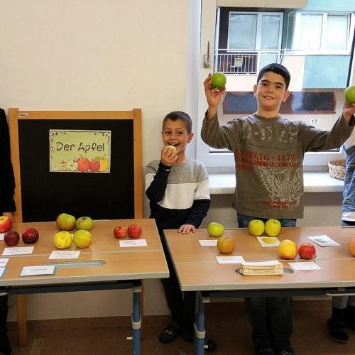 Bild zum Weblog An apple a day....