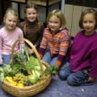 Bild zum Weblog Obstgeschenke
